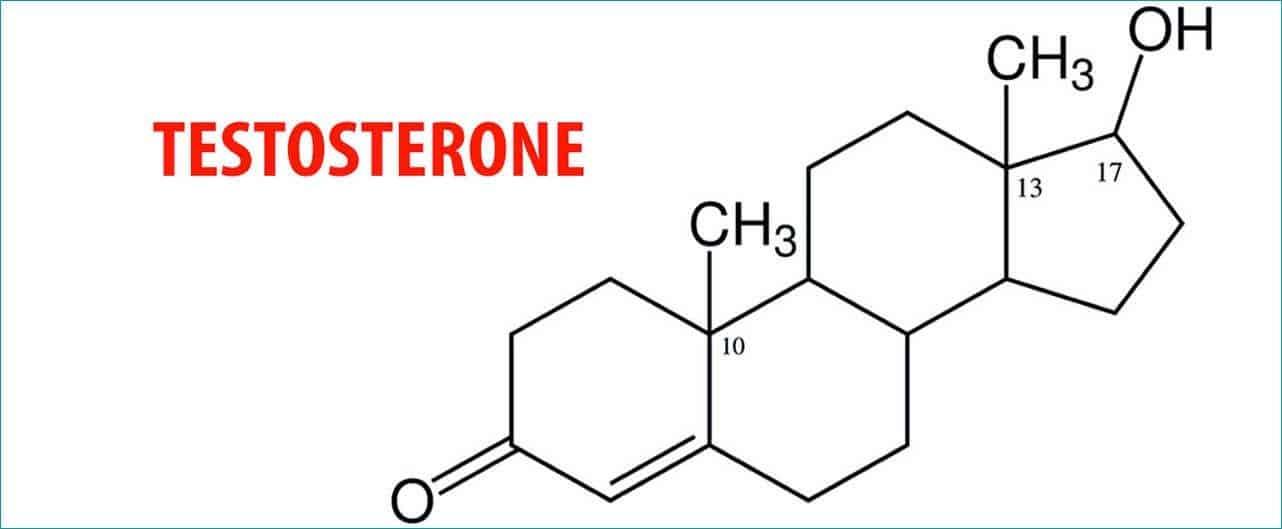 Testosterone e capelli sono collegati